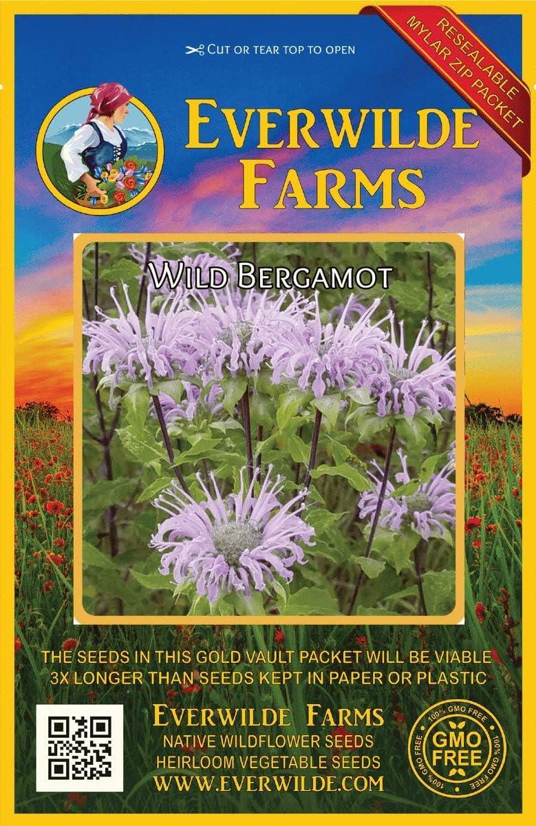 Everwilde Charlotte Mall Farms - Great interest 2000 Wild Native Wildflower Bergamot Seeds G