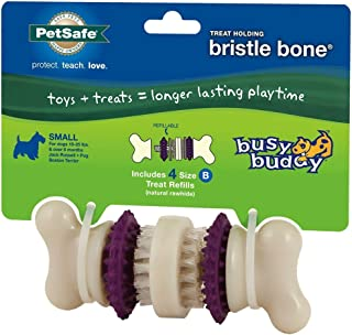PetSafe Busy Buddy Bristle Bone Dog Toy, Chew Toy with Treats