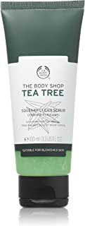 body shop tea tree concealer 02