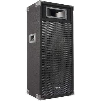Party 215LED - Megafonía portátil, 2 x 15 pulgadas: Amazon.es: Instrumentos musicales