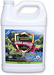 Repellent Spray for Rodents & Animals. Cats, Rats, Squirrels, Mouse & Deer. Repeller & Deterrent for Dogs, Critters, Mice, Raccoon & Skunk. Natural Armor Peppermint Gallon Ready to Use