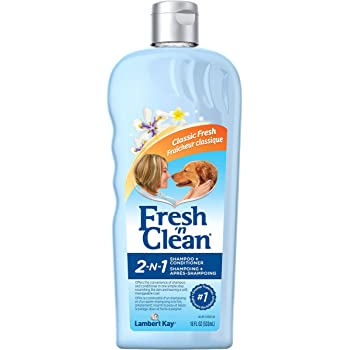 Fresh n Clean 2in1 Shampoo 18oz Fresh Clean
