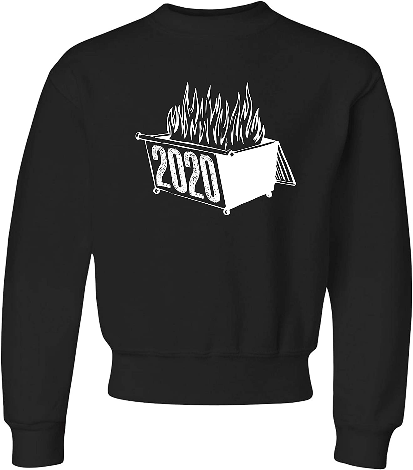 Go All Out Youth 2020 Dumpster Fire Funny 2020 Worst Year Ever C