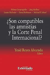 ¿Son compatibles las amnistías y la Corte Penal Internacional? (Spanish Edition)