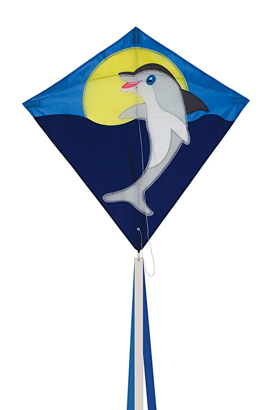In the Breeze Dolphin Diamond Kite, 30