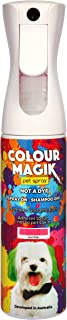Petway Petcare Pet Paint Spray 280 ML– Temporary Dog Hair Paint Spray – Propellant Free Non-Toxic Pet Safe Paint - Quick Dry and Washable – Eco-Friendly Pet Spray for Pet Fur