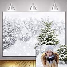 RUINI Winter White Frozen Forest Landscape Christmas Nature Photography Backdrop Christmas Trees Snow Forest Woodland Snowflake Background Decor 7x5FT