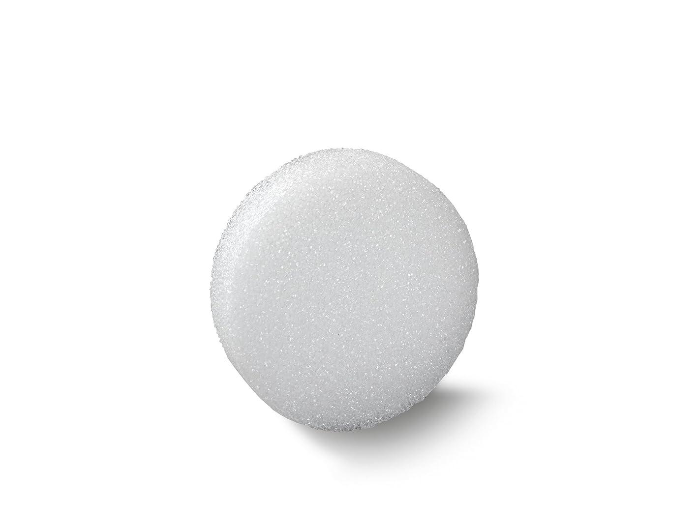FloraCraft Styrofoam Disc 0.9 Inch x 5.8 Inch White