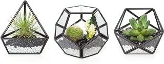 Mkono 3 Pack Mini Glass Geometric Terrarium Container Modern Table Planter Windowsill Decor Floating Shelves DIY Display Box Centerpiece Xmas Gift for Succulent Air Plant Miniature Fairy Garden, Black