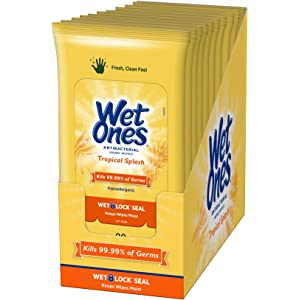12pk Antibacterial Be Zingy Travel Festival Adults Kids Babies Wipes Wet Ones