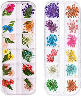2 Boxes Dried Flowers for Nail Art,24 Colors Dry Flowers Mini Real Natural Flowers Nail Art Supplies 3D Applique Nail Deco...