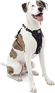 Kurgo K01257 Dog Harness | Car Harness for Dogs | Medium | Black | Pet Safety Seat Belt | Certified Crash Tested Harness |...