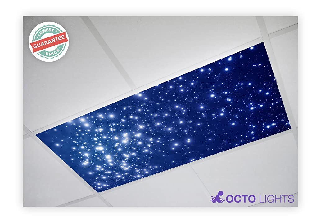 Astronomy 002 2x4 Flexible Fluorescent Light Cover