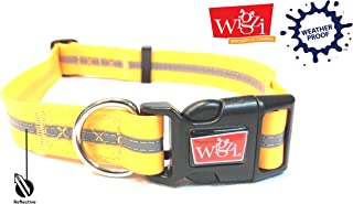 Reflective, Waterproof, Stink Free, Adjustable and Durable Collar For Dogs - 2 Year Warranty- Neon Orange, Large Size