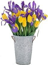 tulip and iris arrangements