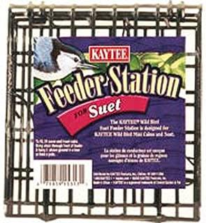 Best brick bird feeder Reviews