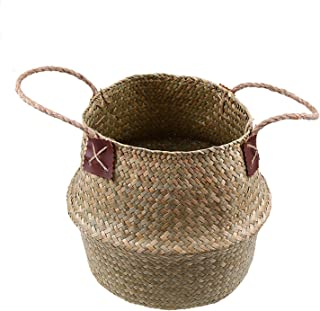 Best flower pot ring home depot Reviews