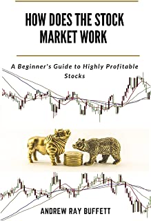 HOW DOES THE STOCK MARKET WORK: A Beginner's Guide to Highly Profitable Stocks
