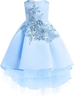 Girls Evening Dress Pleated Princess Dress Delicate Embroidered Flower Pattern Round Neck Sleeveless Solid Color Fashion E...