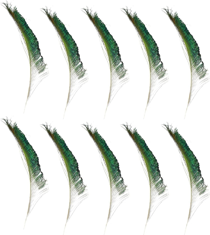 QLINDGK 30 plumas de espada de pavo real naturales, plumas de cola de pavo real de color natural, 10 – 12 pulgadas (25 – 30 cm) para manualidades, bodas, festivales de Navidad