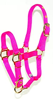 Hamilton Adjustable 3/4-Inch Miniature Nylon Horse Halter, Hot Pink