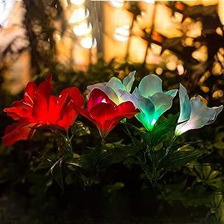 Outdoor Solar Garden Stake Lights,Upgraded Solar Powered Flower Lights,Multi-Color Changing Led Solar Decorative Lights,Light for Garden, Patio 6 Clivia Flower 2 Pack