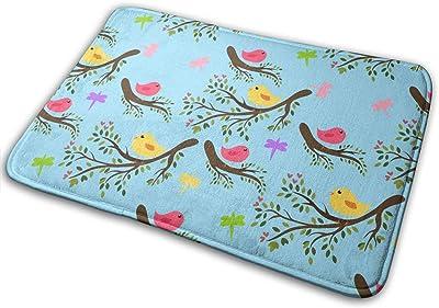 Spring Birds Carpet Non-Slip Welcome Front Doormat Entryway Carpet Washable Outdoor Indoor Mat Room Rug 15.7 X 23.6 inch