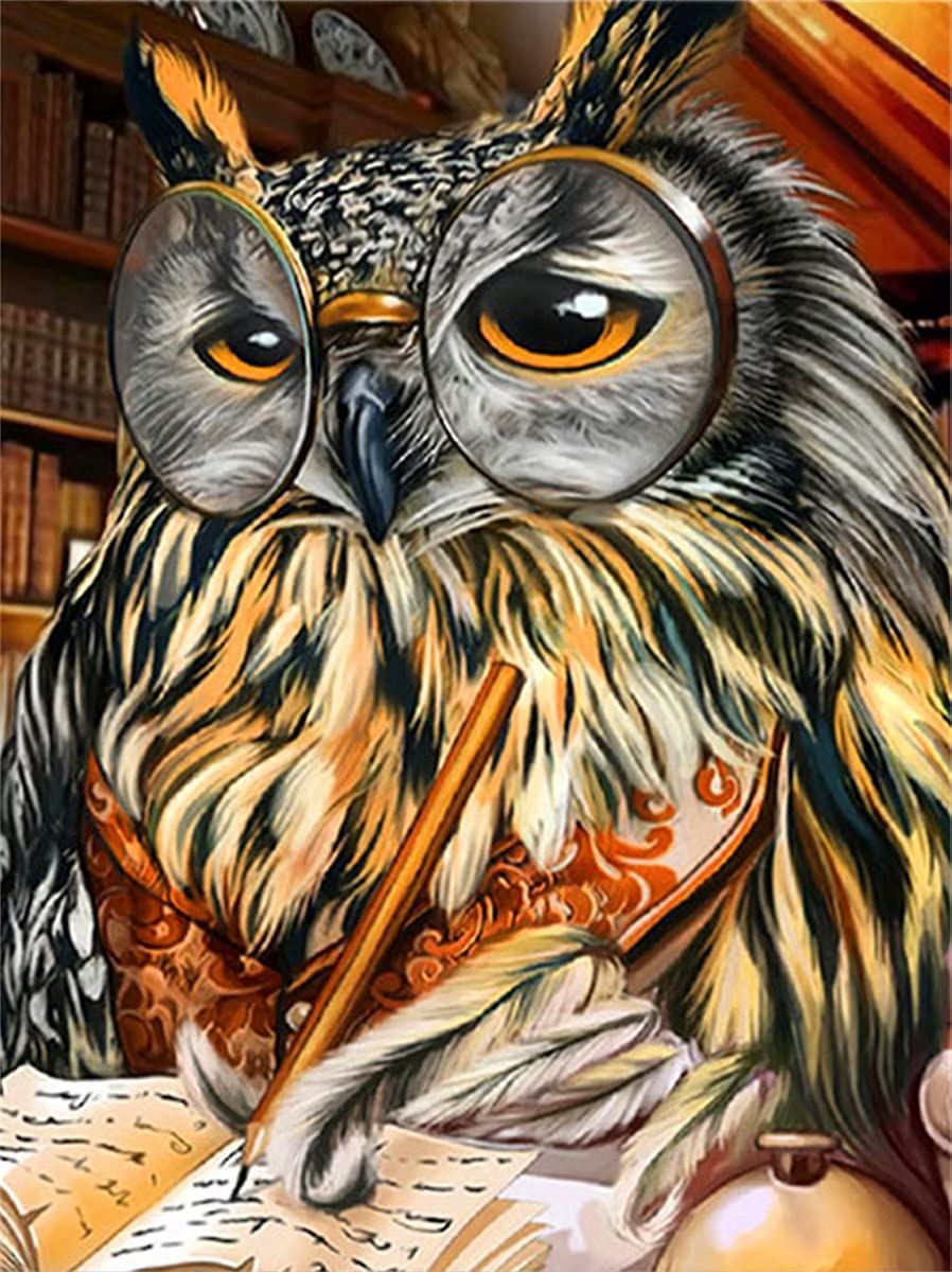 Square Detroit Mall Diamond Now free shipping Painting Wal owl Mosaic