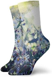 Luxury Calcetines de Deporte Beautiful Wild Purple Daisy Adult Short Socks Cotton Cool Socks for Mens Womens Yoga Hiking Cycling Running Soccer Sports