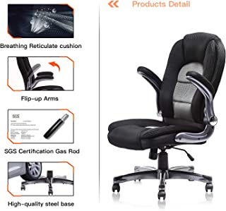 SP Mesh Office Chair Adjustable Tilt Angle and Flip-up Arms Executive Computer Desk Chair, Thick Padding for Comfort and Ergonomic Design for Lumbar Support (GY)