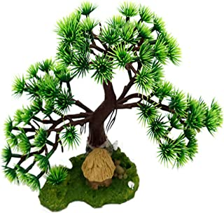 Best bonsai tree for aquariums Reviews