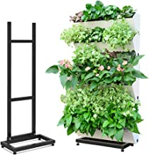 Amazon.es: jardin vertical