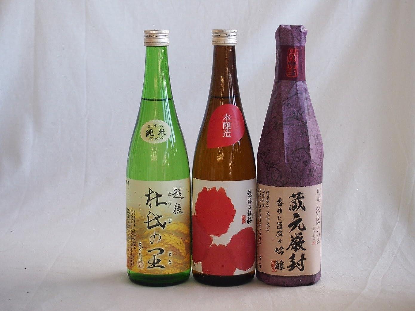 習熟度実現可能経過頚城酒造限定3種類セット(厳封吟醸 純米酒 越路乃紅梅本醸造) 720ml×3本 ギフト飲み比べ セット