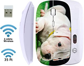 MSD Wireless Mouse 2.4G Travel Mice with USB Receiver, Noiseless and Silent Click with 1000 DPI for Notebook PC Laptop Computer MacBook White Base Image ID 33618979 Dogo Argentino Puppy