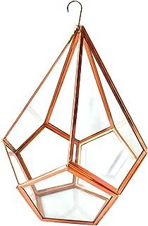 Best hanging diamond terrarium Reviews