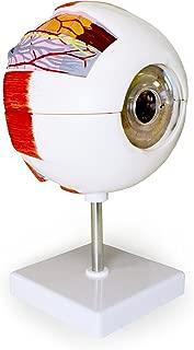 Best eye model key Reviews