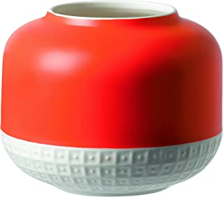 Best royal doulton pottery vase Reviews