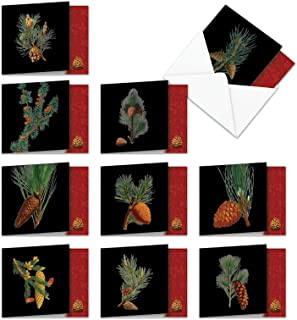 Black Pine - Pack of 10 Happy Holidays Cards with Envelopes (4 x 5.12 Inch) - Assortment of Pine Trees and Cones - Boxed Stationery Notecards Set for Christmas, Season's Greetings AMQ6126HHG-B1x10
