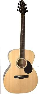 Best samick acoustic guitar models Reviews
