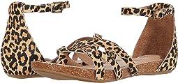 Black/Tan Small Jag Global Haircalf