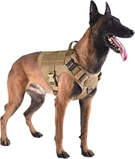 Best ICEFANG Tactical Dog Harness with 2X Metal Buckle,Working Dog MOLLE Vest with Handle,No Pulling Front Leash Clip,Hook and Loop for Dog Patch Review