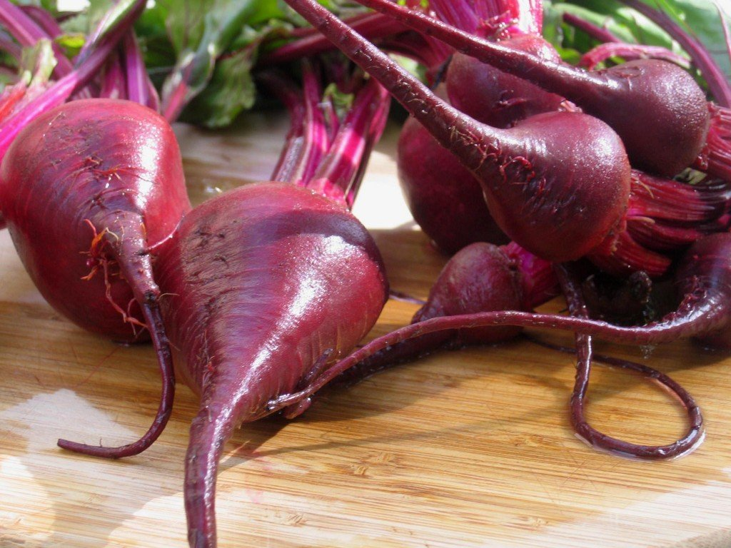 Organic Red Beet Very popular Super special price Powder oz. 4