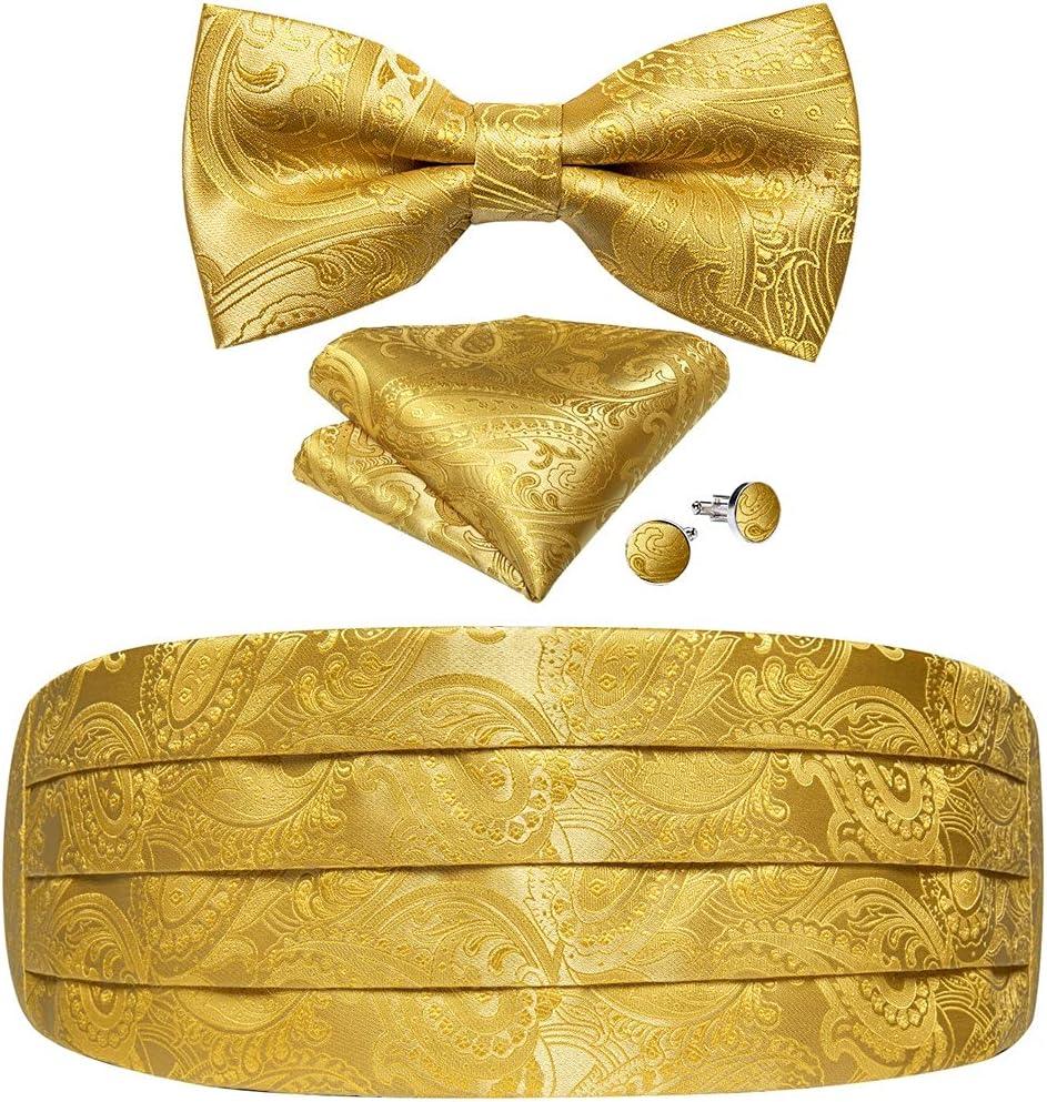 WPYYI Men's Tuxedo Cummerbund Yellow Silk Bow Tie Handerchif Brooch Chain Set Wedding Party Cummerbunds Waist Band (Color : Yellow, Size : One Size)