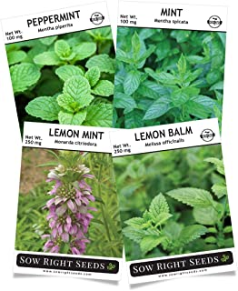 Sow Right Seeds - Mint Garden Seed Collection - Peppermint, Common Mint, Lemon Mint, and Lemon Balm; Non-GMO Heirloom Seeds with Instructions for Starting Indoors or Outdoors;