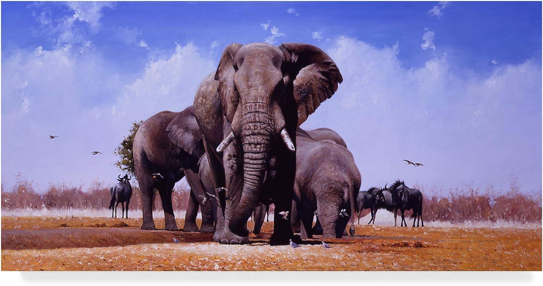 Trademark Fine Art King of Marabou Pan by Pip McGarry, 10x19
