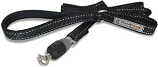 ThunderSnap Quick-Connect Dog Leash