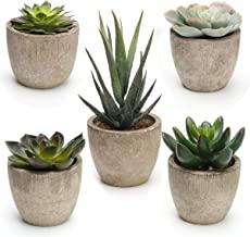 Coitak Artificial Succulent Plants Potted, Assorted Decorative Faux Succulent Potted Fake Cactus Cacti Plants with Pots, S...
