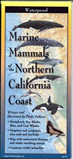Marine Mammals of The Northern California Coast
