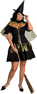 Wizard of Oz Secret Wishes Wicked Witch Of The West Costume
