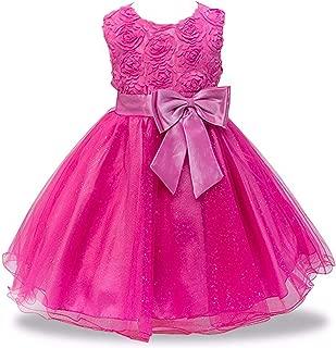 Baby Embroidered Formal Princess Dress for Girl Elegant Birthday Party Dress Girl Dress Baby Girl Christmas 2-14 Years